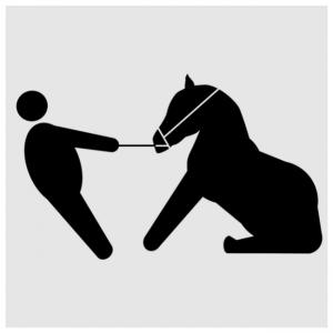caballo no anda